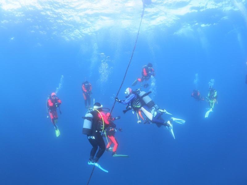 海でロープ潜降しているダイバー