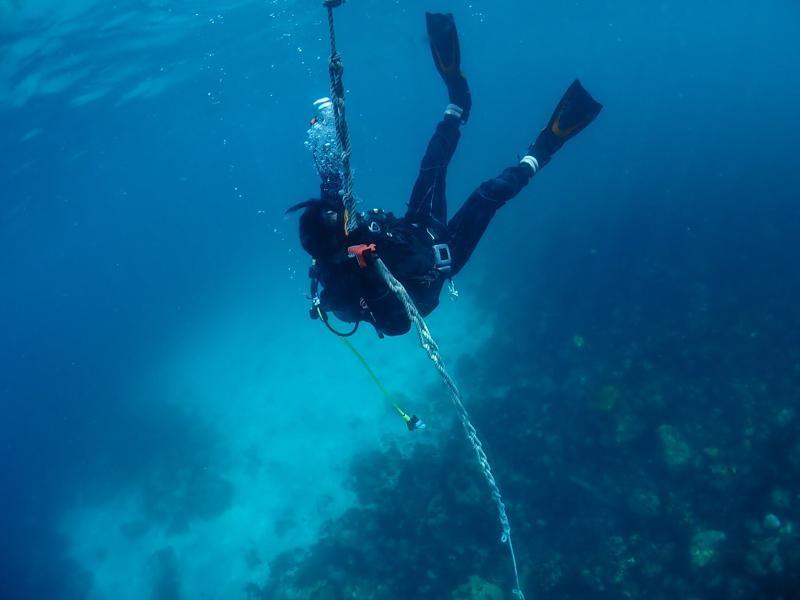 ドライスーツで海で潜降しているダイバー