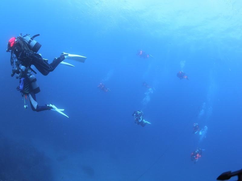 海でフリー潜降しているダイバー