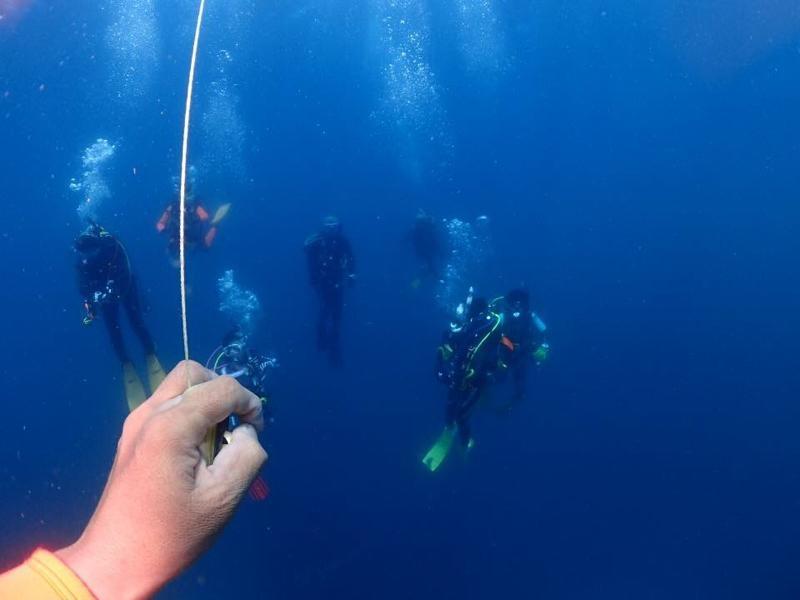 安全停止中の中性浮力ダイバー