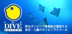 ダイビングスクール 東京都内で体験!