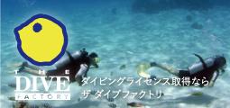 東京でダイビングライセンス取得なら ザ ダイブファクトリー