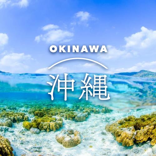 沖縄のダイビングショップ SFD 沖縄